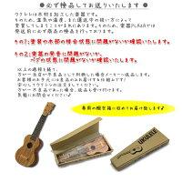 女性用♪Famousウクレレ入門セットFS-1Gハードケースセット