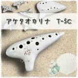 アケタ オカリナ T-5C アルトC管 【良品選定!!】
