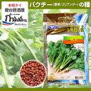 【送料無料】パクチー(コリアンダー・香菜・シャンツァイ・タイ野菜・タイハーブ)種
