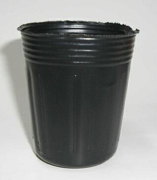 ポリポット深型 6cm 黒 2500個