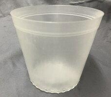 半透明プラ鉢12cm10個