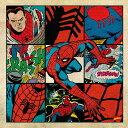 スパイダーマン アートパネル MARVEL Spider Man Mサ...