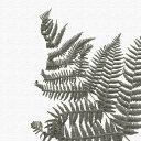 植物 アートパネル pop-0099 アートデリ Mサイズ 30cm×...