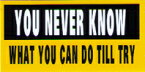 MPS001 物は試し コトワザミニステッカー Proverb Sticker