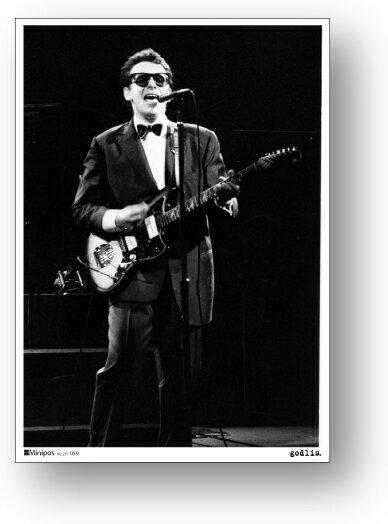 產品詳細資料,日本Yahoo代標|日本代購|日本批發-ibuy99|興趣、愛好|藝術品、古董、民間工藝品|古董/古董|ミニポス B5サイズミニポスター POS059 Elvis Costello エルビス・コステロ …