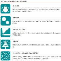 [予約]T-fal衣類スチーマーアクセススチームライトDT7002J0【smtb-k】【ky】【KK9N0D18P】
