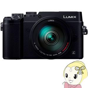 パナソニック ミラーレス一眼カメラ LUMIX DMC-GX8H-K 高倍率ズームレンズキット [ブラック]【smtb-k】【ky】【KK9N0D18P】