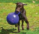 アメリカで大人気!持ち手のついた丈夫なボール(取手付き大きいボール)♪大型犬用 丈夫なお...