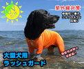 メール便可!大型犬用GOLPARAラッシュガードウエットスーツラッシュガードペット用(ドッグ)紫外線対策に!水着保護服介護服大型犬の服つなぎ