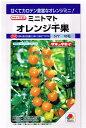とにかく甘い!葉かび(Cf9)・斑点病の耐病性をもつ!1割引き!野菜種ミニトマトオレンジ千果1...