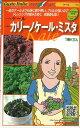 野菜種イタリア野菜カリーノケール・ミスタ 40粒トキタ種苗
