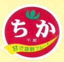 青果シールミニトマトちか1000枚 タキイ種苗