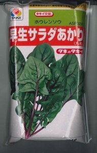 野菜種ほうれんそう早生サラダあかり 1Lタキイ交配