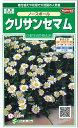 花の種 クリサンセマムノースポール 小袋 サカタのタネ