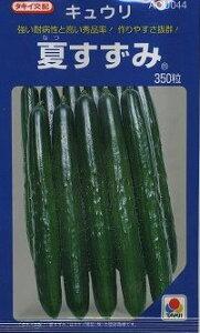 病気に強く作りやすいで家庭菜園に大人気品種野菜種 きゅうり夏すずみ350粒 タキイ交配