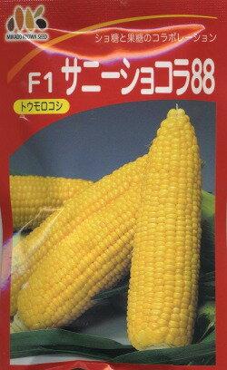 サニーショコラ88(種) 200粒