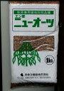 有害線虫抑制効果!エン麦ニューオーツ(イネ科) 1kg カネコ種苗(株)