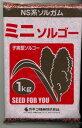 防風対策に!ソルガムミニソルゴー 1kgカネコ種苗(株)