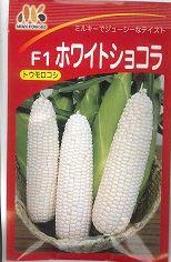 ホワイトショコラ(種) 200粒