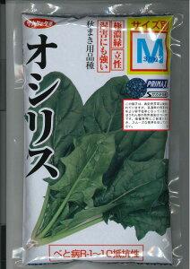 べと病R-1〜10抵抗性。極濃緑、立性、湿害にも強い秋まき用ホウレンソウ野菜種ホウレンソウオシ...