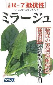 ズバリ作りやすい!夏に作るならこれがおすすめ!野菜種 ほうれんそうミラージュ 3万粒サカタ...
