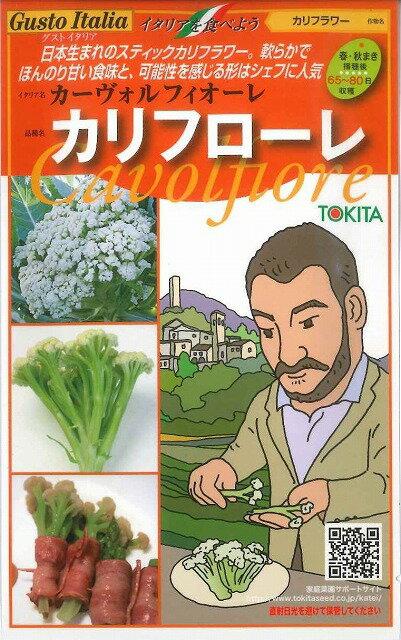 トキタ種苗 カリフローレ 50粒