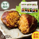 日本の米育ち金華豚肉巻きおにぎり6個入セット【ヒラボク 平田...