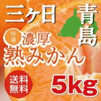 三ヶ日青島濃厚熟みかん5kg産地直送