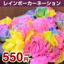 レインボーカーネーションの花束です。お誕生日プレゼントに。虹色のカーネーションを贈って、...