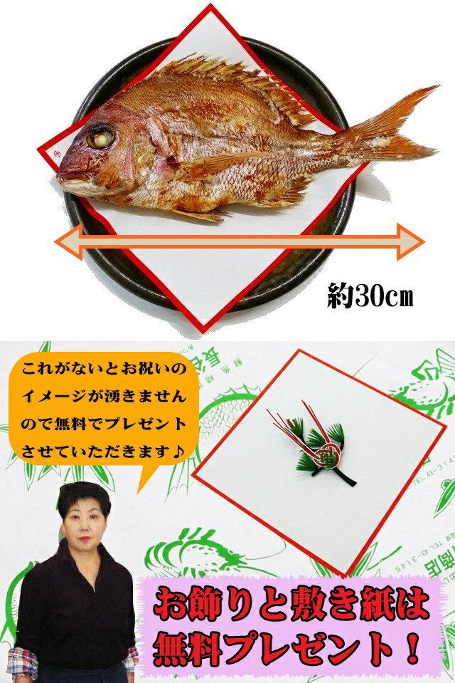 お食い初め 鯛 はまぐり セット 500g  敷紙 鯛飾り 祝い箸 天然真鯛 焼き鯛 お祝い 料理 蛤 祝鯛 冷蔵