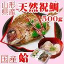 お食い初め 鯛 はまぐり セット 500g 送料無料 敷紙 鯛飾り 祝い箸 天然真鯛 焼き鯛 お祝い 料理 蛤 祝鯛 冷