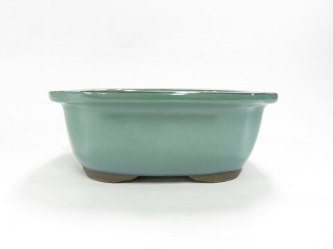 瀬戸焼 モッコ鉢 オリベ7号 山野草,盆栽など和風の植物にぴったりです。