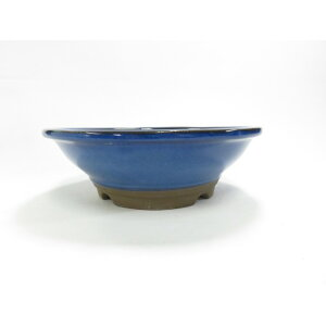 Manko ware Maruzin Kasaba Ikoko No.6 Yamano العشب وعاء أفضل لبونساي مصغرة.