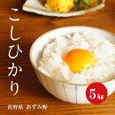 お米長野県安曇野産コシヒカリ1等白米5kg