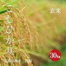 五郎兵衛米浅科産コシヒカリ1等米玄米30kg