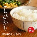 特別栽培米安曇野産コシヒカリ1等米5kg