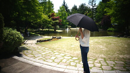 送料無料クラシコ遮光率100%完全遮光100%完全遮光UV日傘uvカットUVカットサークルレース傘かさカサ遮光レディース日傘紫外線カット紫外線対策ブラック▽