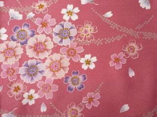 着物レンタル春秋冬用レディース袷小紋セット「Lサイズ」ピンク・桜(送料無料)の画像3