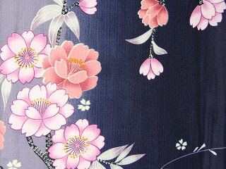 宅配レンタル単衣着物セット「Mサイズ」RYOKOKIKUCHI(初夏・初秋用/女性用レディース単衣)の画像3