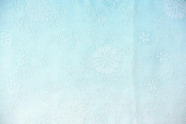 【レンタル】半幅帯 レンタル (夏物・浴衣用・単衣用)水色・サクラ 〔お好きな帯を選べる変更オプション〕(春秋冬用/女性用)【返却送料無料】