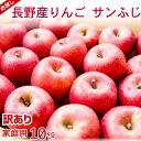 【信州産】 訳ありサンふじりんご10kg お取り寄せフルーツご家庭用リンゴ長野県産直