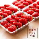 【送料無料】【信州産 】章姫苺たっぷり4パックセットいちご 2L〜4Lサイズ クール冷蔵便お届けサイズはシーズンによって異なります