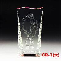 クリスタルトロフィーCR-01(中)