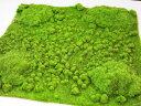 【モスマット】ディスプレイに*造花のグリーンマット 芝生マット ナチュラル雑貨 インテリア雑貨