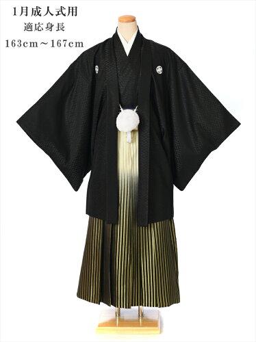 紋付袴 レンタル(1月/成人式)8SAF-08[羽織袴レンタル]〔男性〕〔紳士〕〔着物〕〔成人...