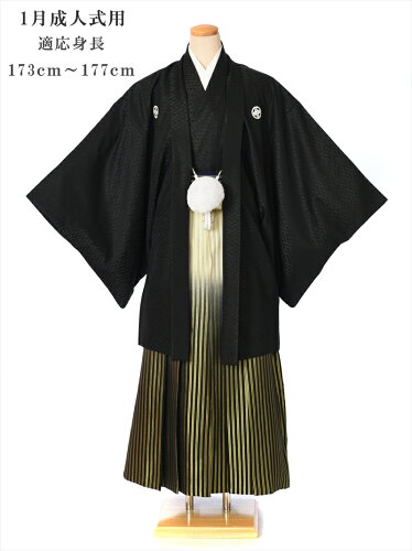 紋付袴 レンタル(1月/成人式)8SAF-10[羽織袴レンタル]〔男性〕〔紳士〕〔着物〕〔成人...