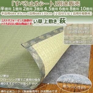 い草カーペット『萩』