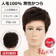 人毛100%男性かつら男ウィッグフルウィッグかつらウイッグ白髪隠し増毛薄毛GF001