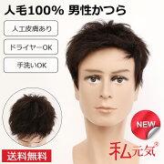 人毛100%男性かつら男ウィッグフルウィッグかつらウイッグ白髪隠し増毛薄毛GI002