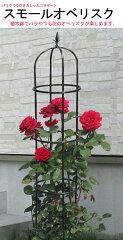 バラやつる性の植物に 第一ビニール スモールオベリスク 160cm P25Apr15